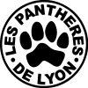 les pantheres de lyon